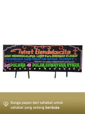 Bunga Dukacita Medan 02